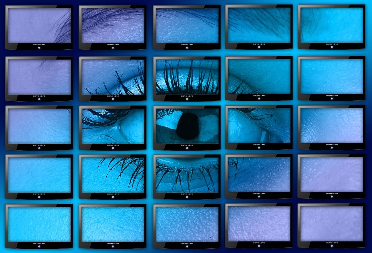 Pourquoi la télésurveillance vous protège plus des cambrioleurs ?